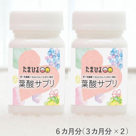 葉酸サプリ(鉄+乳酸菌+カルシウム+ビタミン配合) 6カ月分