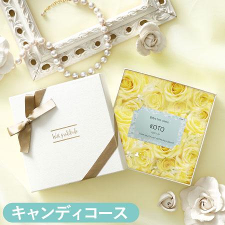 【送料無料】【アツラエ】名入れ e-book カタログギフト キャンディコース たまひよSHOP・たまひよの内祝い